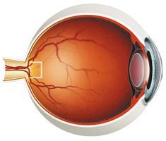 Опасны ли для человека черные точки перед глазами?