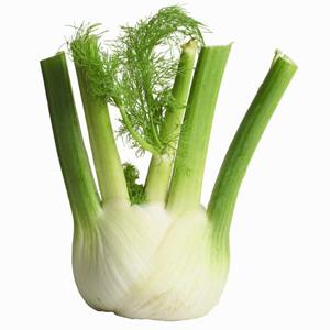 the use of fennel