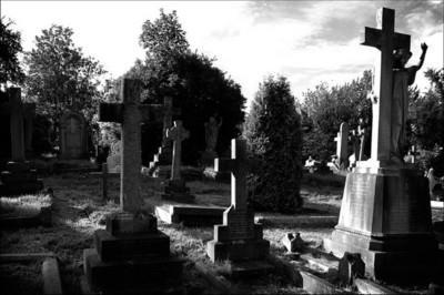 К чему снится кладбище и живые покойники фото
