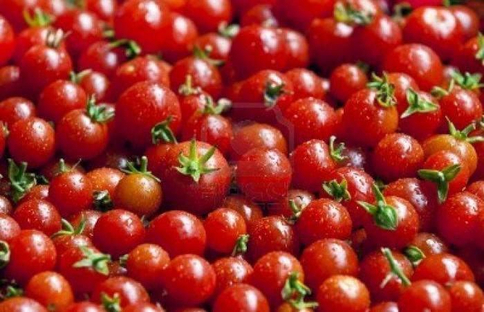 the best varieties of cherry tomatoes