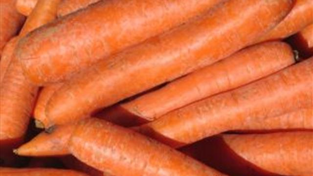 varieties of carrots for storage