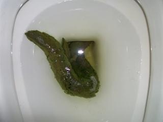 Светло-зеленый цвет кала