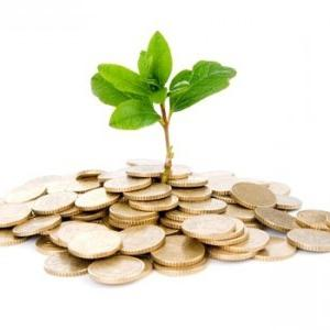 payback period of capital investments