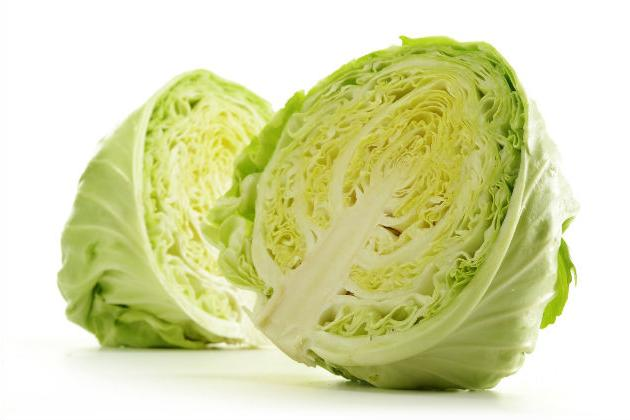 what dream cabbage
