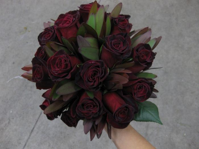 Черная роза цветок