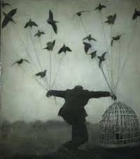 Dream Dream Birds Dream Interpretation