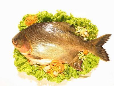 Сон рыба