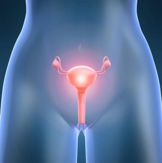 Воспалительного процесса во влагалище или придатках симптомы