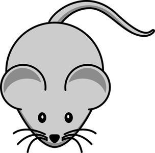 Или как избавиться от мышей в квартире