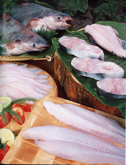 how to cook pangasius fish
