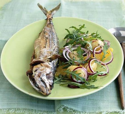homemade mackerel