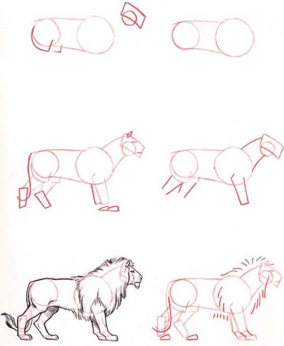 Как сделать льва нарисовать