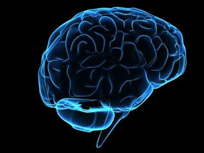epilepsy disease