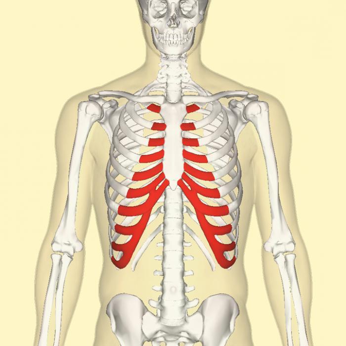 Синдром Титце: причины, симптомы, методы лечения и диагностики