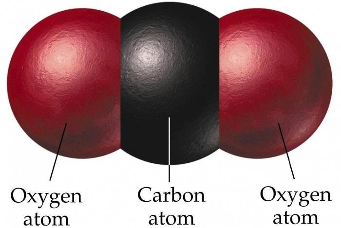 Углекислый газ образуется при
