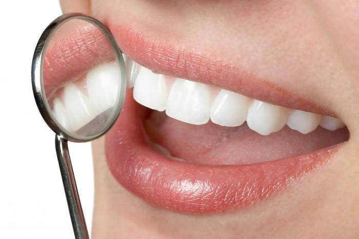 Поэт нумерация зубов человека