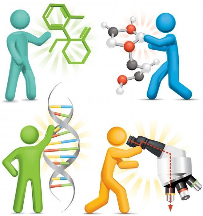 Научные методы познания окружающего мира