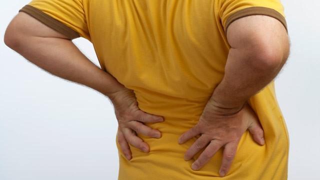 Исследования ученых боли в спине