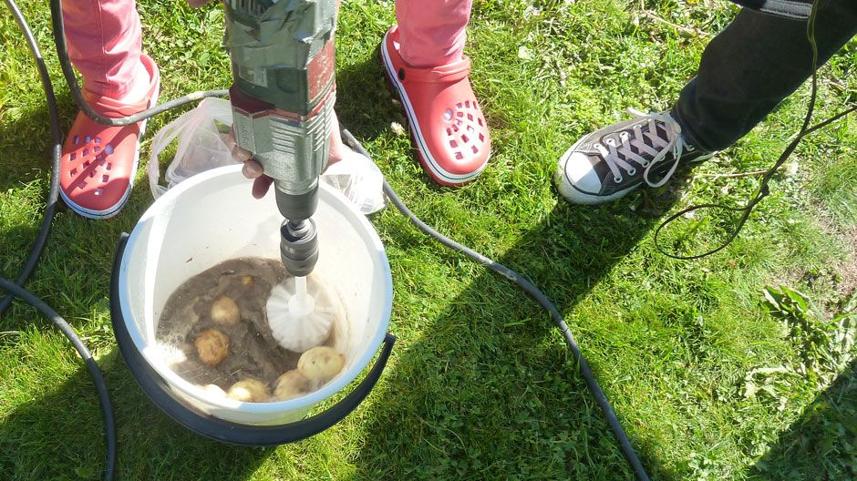 Можно ли мыть картошку перед хранением: как правильно хранить урожай в домашних условиях, полезные рекомендации