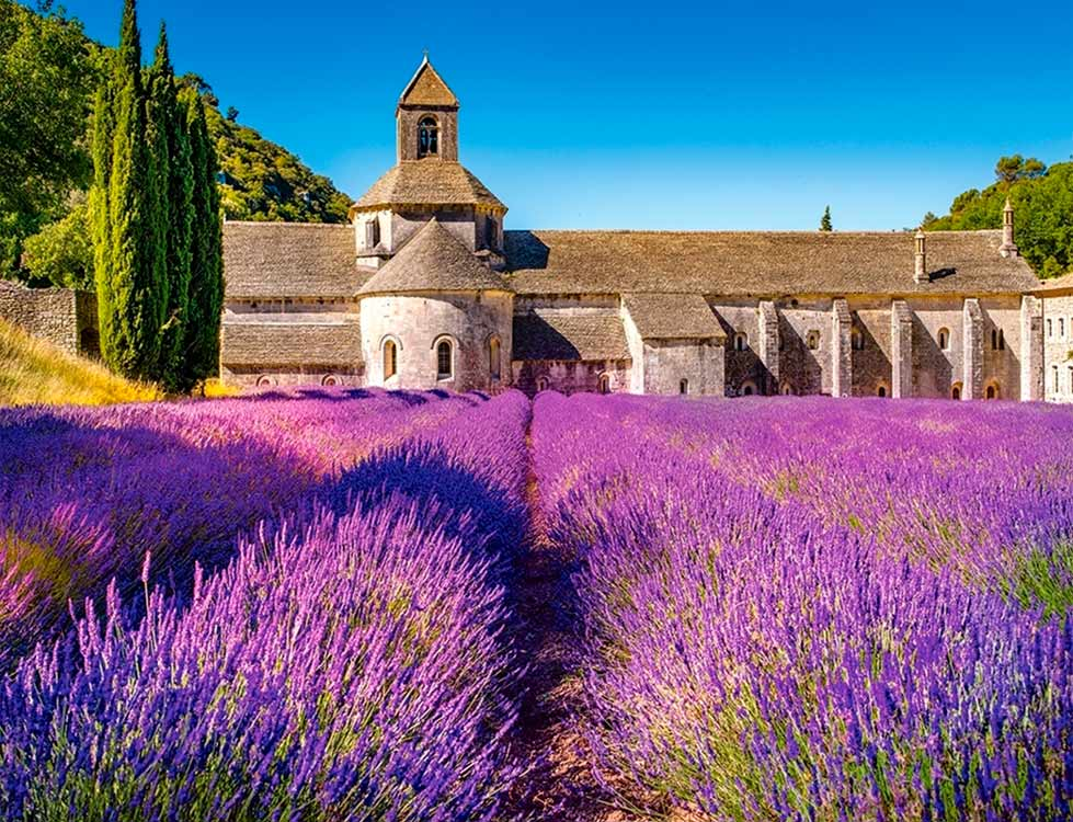 деревне природа франция картинки вкус
