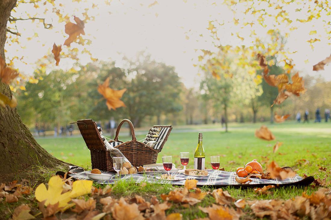 Ноябрь: как отдыхаем (календарь праздников)