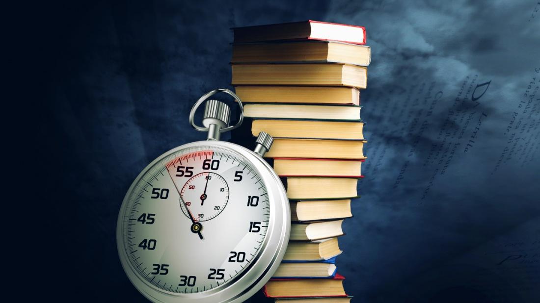 Книга стрижи на льду читать онлайн