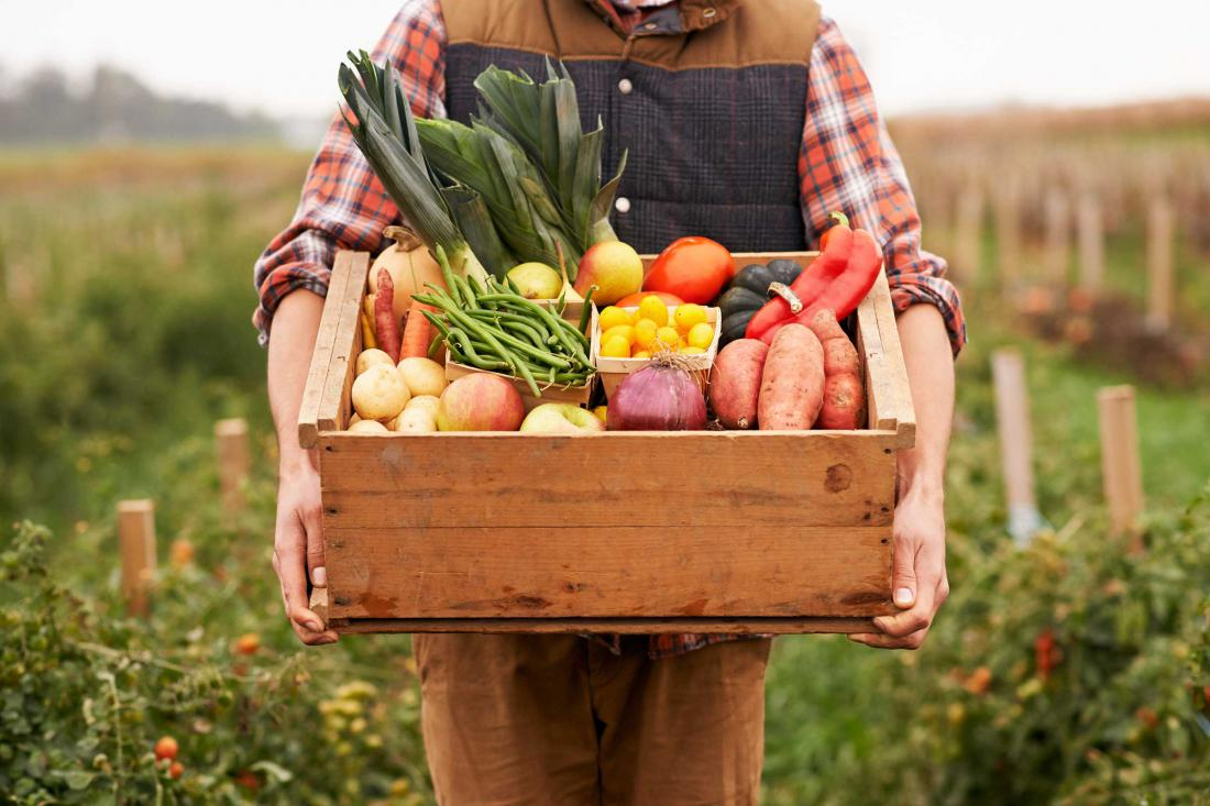 Southwest England Southwest England U-Pick farms: Find a pick Pictures of vegetable farms