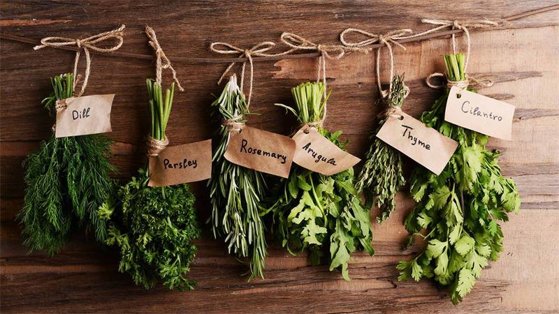 выпускные травы кулинарные фото мать