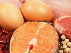 Животные и растительные продукты, богатые белком