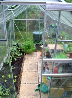 Огурцы и помидоры. Выращивание в теплице на продажу