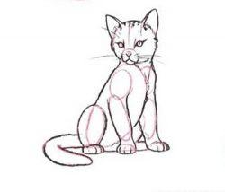 Как нарисовать кошку, самое близкое к человеку домашнее животное