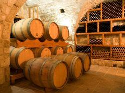 Как в домашних условиях приготовить вино из черной смородины