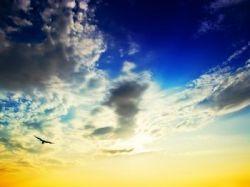 Состав воздуха, которым дышит Земля