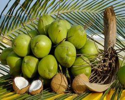 Чем открыть кокос в домашних условиях