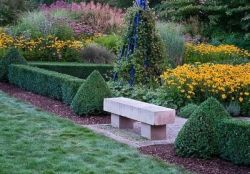 Живая изгородь на даче станет оригинальной идеей в ландшафтном дизайне