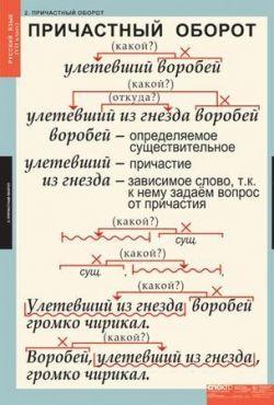 Практикум по русскому языку: что представляют собой предложения с причастным оборотом