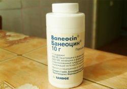 Препарат «Банеоцин» (порошок). Инструкция по применению