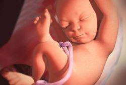 35 неделя беременности: шевеления и вес плода. Роды на 35-й неделе беременности