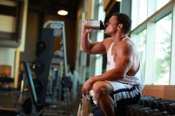 Что принимать после тренировки: гейнер или протеин? Что выбрать для набора массы: гейнер или протеин?