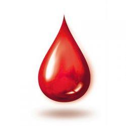 холестерин в крови 9.3