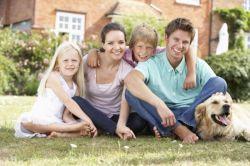 Типы семей формы и типы семьи