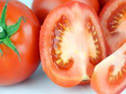 Лучшие сорта томатов для Урала помогут получить богатый урожай
