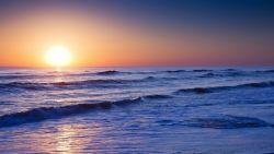 Ресурсы Мирового океана: их виды и значение