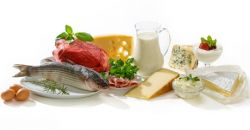 В каких продуктах содержится белок, необходимый для организма