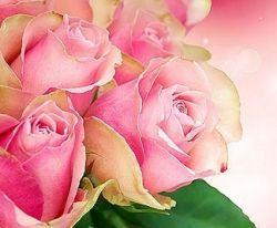 Чтобы розы долго стояли в вазе. Маленькие хитрости