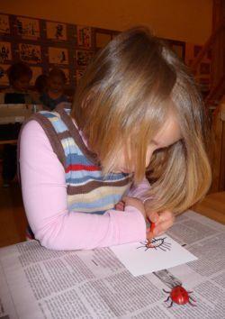 Графические диктанты для дошкольников. Темы графических диктантов