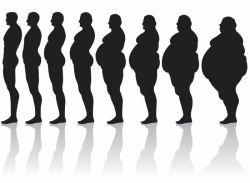 Какой должен быть вес у здорового человека?