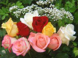 Букет красивых роз в подарок