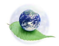 Что такое экологический мониторинг