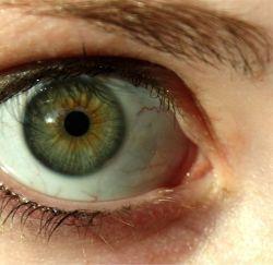 Зеленые глаза - значение и влияние на характер человека